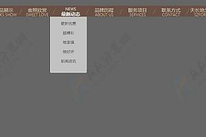 中英文字切换导航条鼠标悬停滑动下拉二级导航菜单
