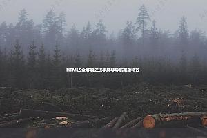 HTML5全屏响应式手风琴导航菜单特效