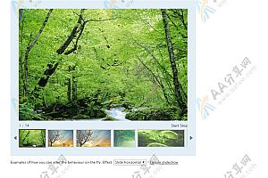 高度可定制的jQuery相册画廊js特效插件