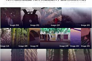 纯CSS鼠标经过图片悬停弹出遮罩文字信息特效演示代码