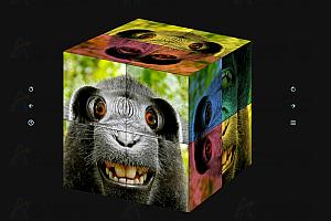 HTML5 CSS3 3D魔方拼图在线益智小游戏网页源码下载
