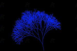 多彩梦幻精灵树canvas特效舞动动画