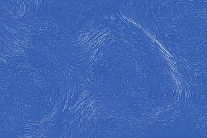 动态灰烬粒子随机飘动canvas特效动画背景
